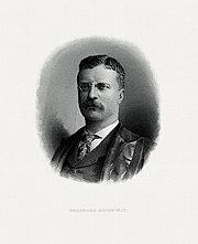 ROOSEVELT, Theodore-prezidanta (BEP gravuris portreton).jpg
