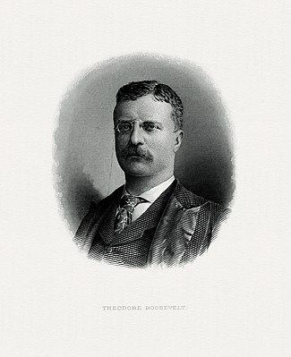 BEP engraved portrait of Roosevelt as President.