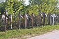 RO GJ Biserica Cuvioasa Paraschiva din Vladimir (6).JPG