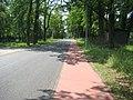 Radweg in Rot - Dobbrikow - Nettgendorf - panoramio.jpg