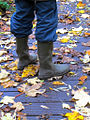 Rain Boots with Leaves.jpg