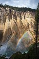 Rainbow (3952552093).jpg