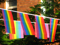Rainbow Flags (9604087831).png