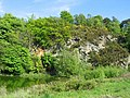 Ravelston Quarry - geograph.org.uk - 10094.jpg