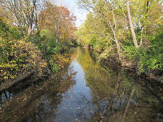 Red Cedar River (Michigan)