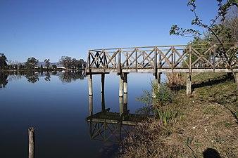 Reflejos del Rio Ebro en Deltebre.jpg