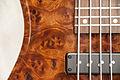 Regenerate Malibu series 5 string bass details (burl camphor).jpg