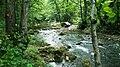 Reka Gradac 3.jpg
