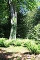 Rhododendronpark Bremen 20090513 076.JPG