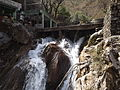 Rishikesh harikempty fallsdwar (375).JPG