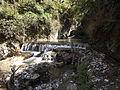 Rishikesh harikempty fallsdwar (401).JPG