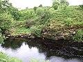 River Brora rocky riverbank - geograph.org.uk - 484134.jpg