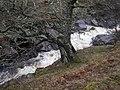 River Calder - geograph.org.uk - 303644.jpg