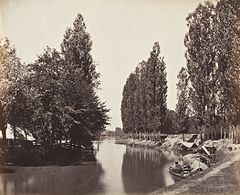 River With Trees (India) LACMA M.2008.40.282.jpg