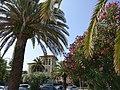 Riviera delle Palme.jpg