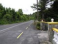Road at Cloghglass - geograph.org.uk - 1391631.jpg