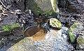 Robert Tannahill's Well, Glen Park, Gleniffer Braes, Paisley.jpg