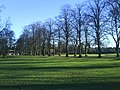 Rothamsted Park - geograph.org.uk - 993124.jpg