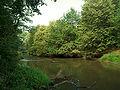 Rudy - Rzeka Ruda 3.jpg