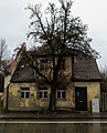 Ruin ^ tree - Flickr - Stiller Beobachter.jpg