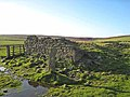 Ruin on Blanchland Moor - geograph.org.uk - 282221.jpg
