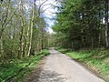 Rural road - geograph.org.uk - 414147.jpg