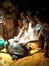 Sacred turtle in China.JPG