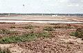 San Fernando salines near Cadiz, Avocet, Kentish plover, Spotted redshank (37756938421).jpg