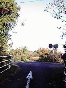 ... 号磯部大王自転車道線 - Wikipedia