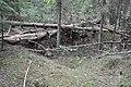 Sarkanās armijas ierakumi pie Gobdziņu kapsētas, Skrundas pagasts, Skrundas novads, Latvia - panoramio (1).jpg