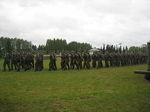 Territorial Forces (Finland) - The Territorial Company (maakuntakomppania) of Satakunta, participating in the national parade of the Finnish Defence Forces in Pori on the Defence Forces Flag Day 2009.