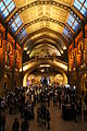 Science Uncovered 2013 at the Natural History Museum, London 36.JPG