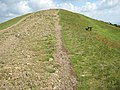 Seat on Black Hill, Malvern Hills - geograph.org.uk - 825451.jpg