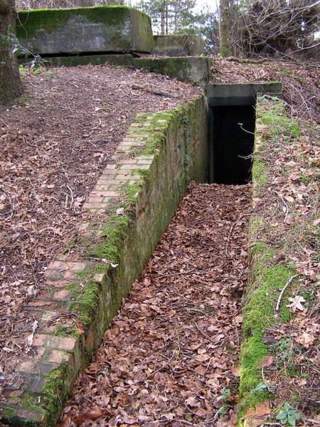 File:Second World War bunker in Newlands Plantation, New Forest - geograph.org.uk - 312899.jpg