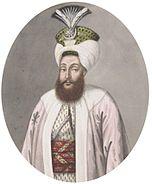 Selim III by John Young