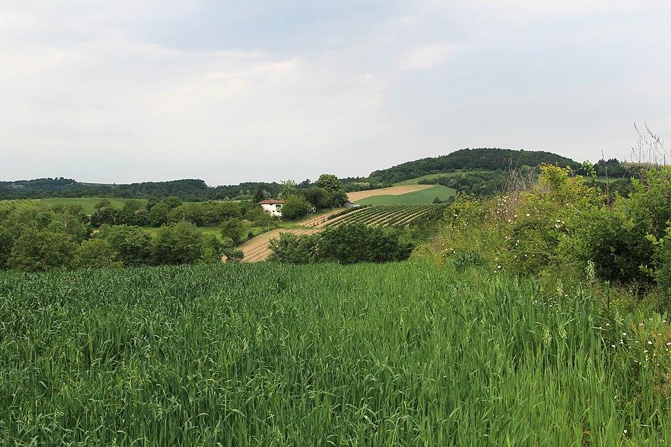 Selo Joševa - opština Valjevo - zapadna Srbija - Panorama 5