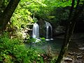 Seneca-Waterfalls-Big-Hole ForestWander.jpg
