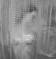 Shower Curtain with Figure.png