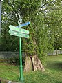 Signpost in Eltham Park - geograph.org.uk - 1297349.jpg