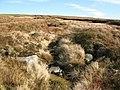 Sike on Langdon Fell - geograph.org.uk - 615217.jpg