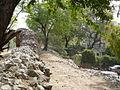 Siri Fort wall at Panchsheel Park (3358108493).jpg