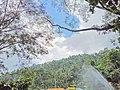 Situ Janawi Majalengka Jawabarat.jpg