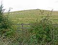Slawston Hill - geograph.org.uk - 569501.jpg