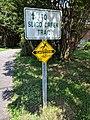 Sligo Creek Trail Kemp Mill 20.jpg