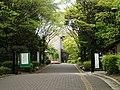 Soai-Univ-2013050101.jpg