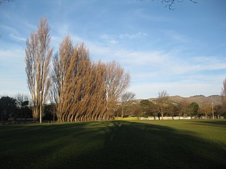 Somerfield, New Zealand - Somerfield Park, Christchurch