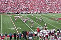 South Carolina at Arkansas, 2013 001.jpg