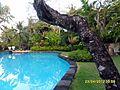 South Kuta, Badung Regency, Bali, Indonesia - panoramio (7).jpg