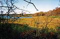 South Westport, Massachusetts, 1993 - Flickr - PhillipC.jpg