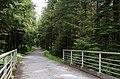 Spur 4 Bridge - panoramio.jpg